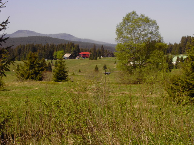Bayerischer Wald (Bilder von Alois)